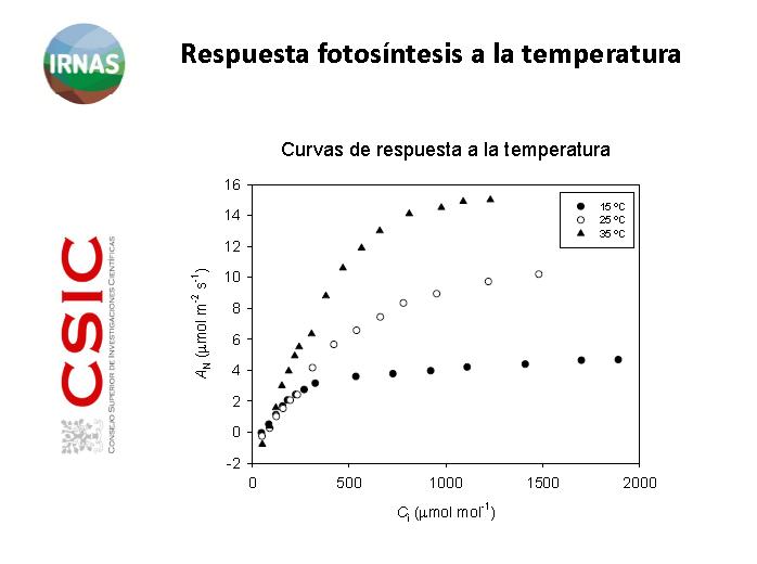 fotosintesis y temperatura
