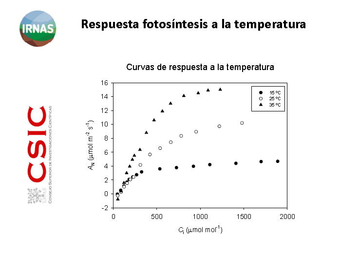 photosynthesis and temperature