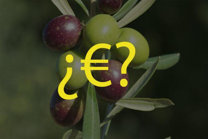 ¿De qué depende el precio del aceite de oliva? Lo analizamos